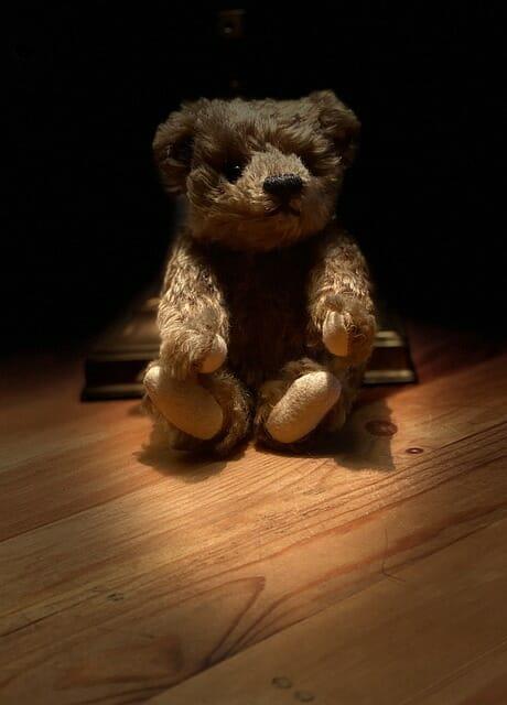 teddy bear on stage, presenting